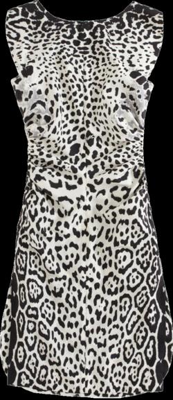YSL leopard